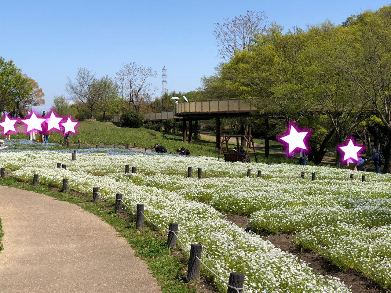 国営木曽三川公園138タワーパーク